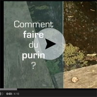 Comment faire du purin d'orties !